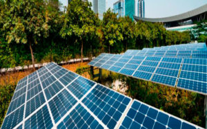 Sustentabilidade Empresarial2 - Contabilidade na Zona Leste - SP | Peluso & Associados