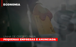 Linha De Credito Para Pequenas Para Pequenas Empresas E Anunciada - Contabilidade na Zona Leste - SP | Peluso & Associados